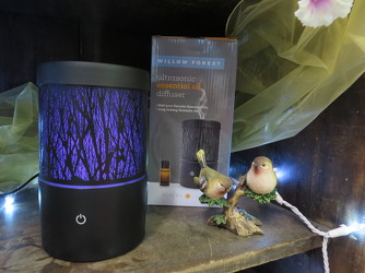 Serene Living Willow Forest Essential Oil Diffuser from Carter's Flower Shop in Farmville, VA
