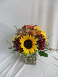 Harvest Home from Carter's Flower Shop in Farmville, VA