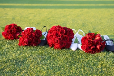 Bride and BM's Red Rose Bouquets  from Carter's Flower Shop in Farmville, VA