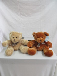Marti & Ruben Plush Bears from Carter's Flower Shop in Farmville, VA