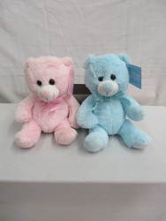 Pink and Blue Baby Bears from Carter's Flower Shop in Farmville, VA